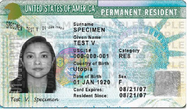 Green card lottery application free online