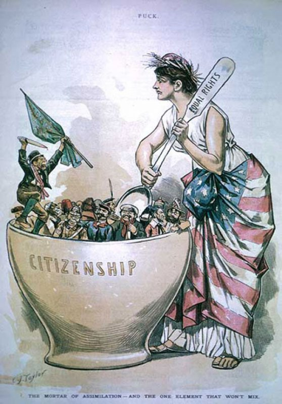 a comparison of irish and african american immigrants Immigration to the united states is the international movement of non-us nationals in order to reside permanently in the country lawful immigration has been a major source of population growth and cultural change throughout much of the us history.